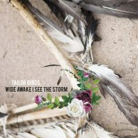 Tailor Birds_Wide awake I see the storm 2016